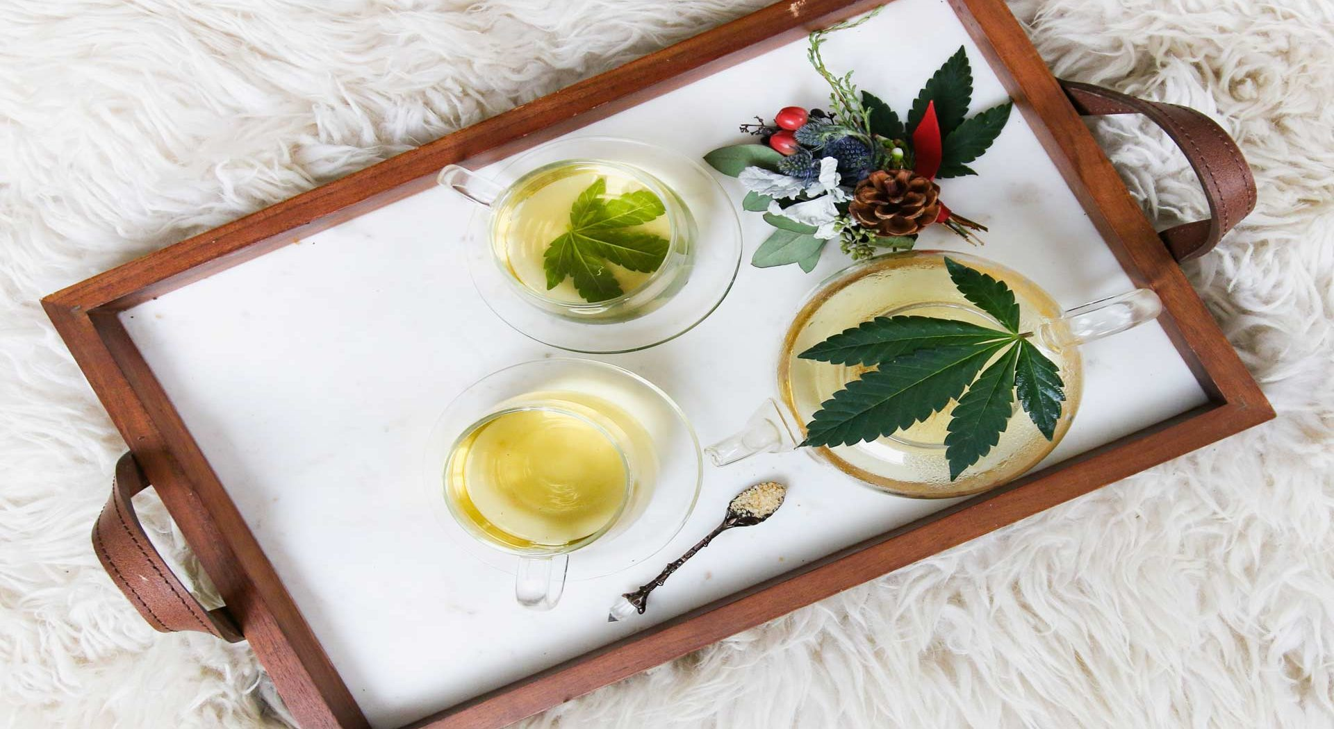 How Terpenes Can Increase Your Energy?